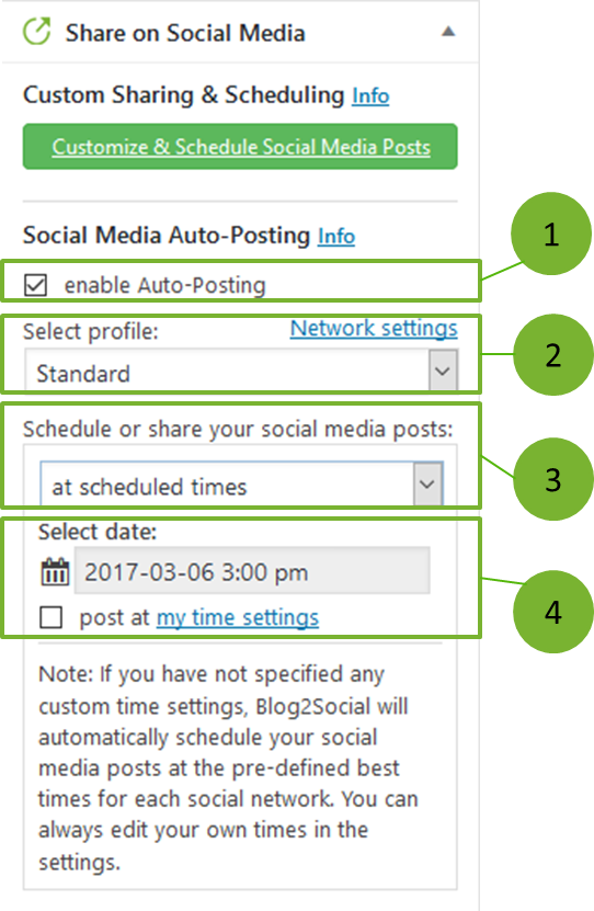Social Media Auto-Poster Detailed View